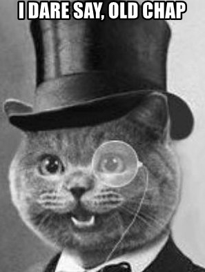 i-dare-say-old-chap-that-molar-was-purr-fect.jpg